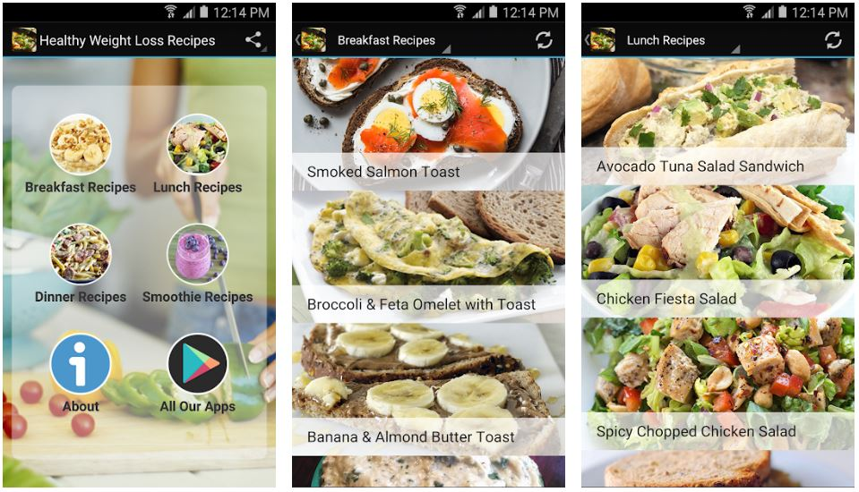 Metro blog Healthy Weight Loss Recipes App