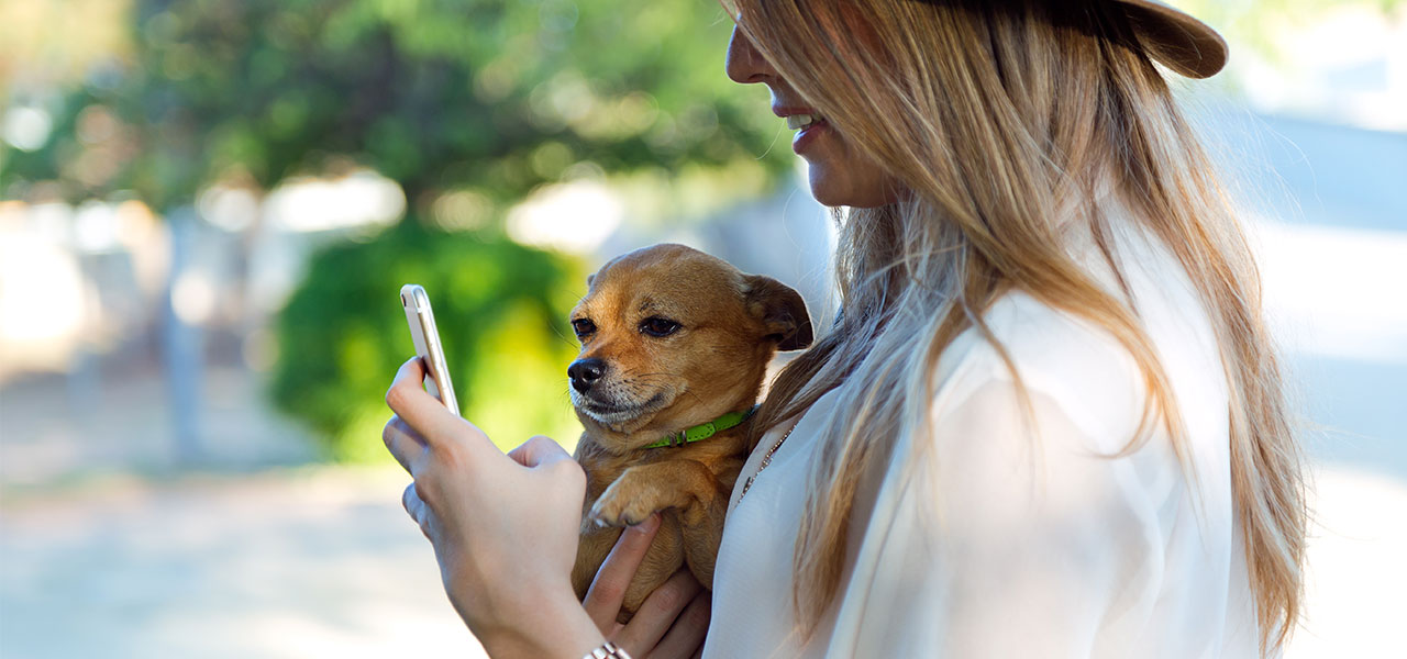 dog-pet-apps
